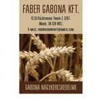 Faber Gabona Kft.