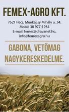 Femex-Agro Kft.