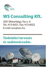 WS Consulting Kft.